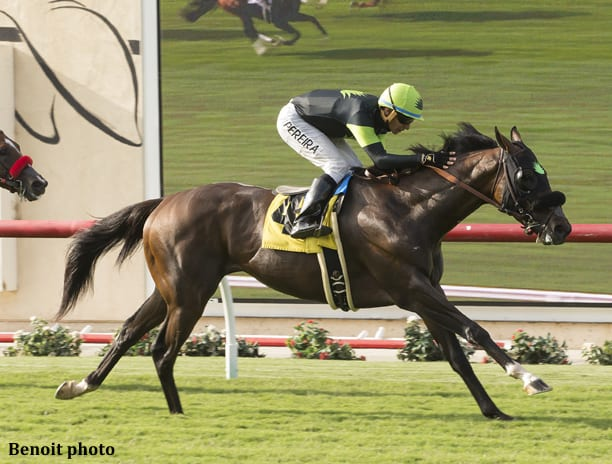 Bowies Hero Wins Oceanside On Del Mar S Opening Day