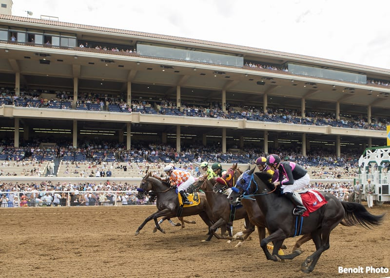 Despite Slight Uptick In Equine Injuries, Overall Trends Remain Positive