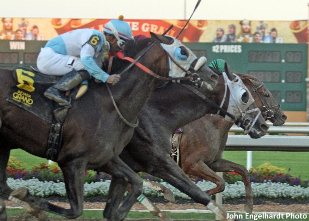 Eagle Sets New Stakes Record With Michael G. Schaefer Memorial Win ...
