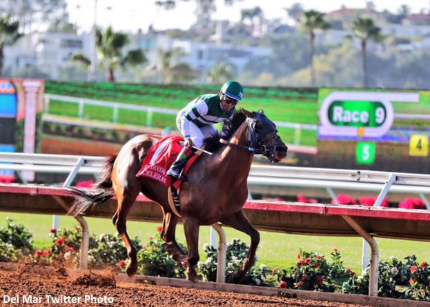 Accelerate Romps In San Diego Handicap; Arrogate Fourth