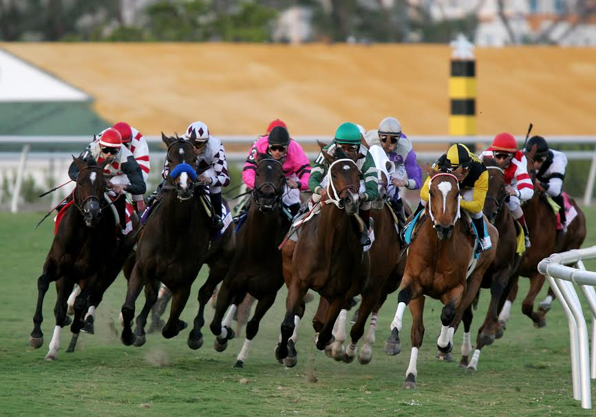 Christmas Horse Racing.Christmas Eve Carryover Of 296 342 In Gulfstream S Rainbow