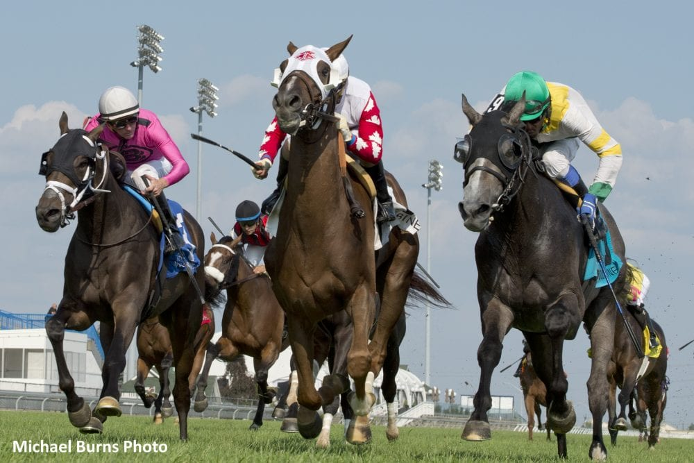 Favored Channel Maker Edges Final Copy In Breeders Stakes