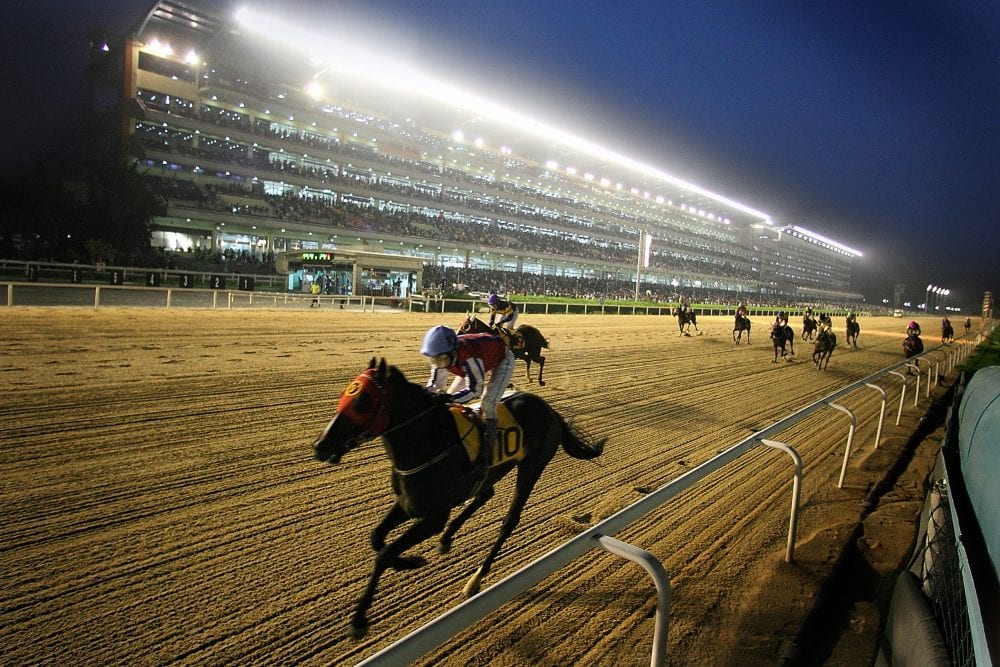 U S Sired Horses Win All Races On South Korean Opening