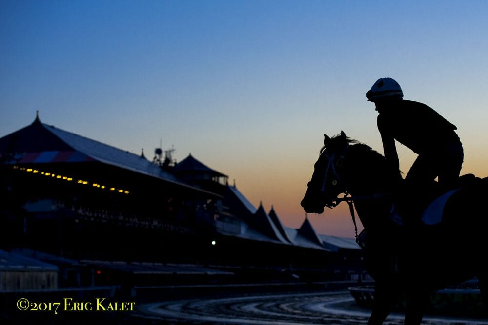 Additional Equine Safety Policies To Be Implemented Immediately At Saratoga