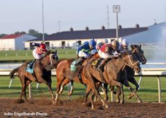 pick 5 Archives - Horse Racing News | Paulick Report