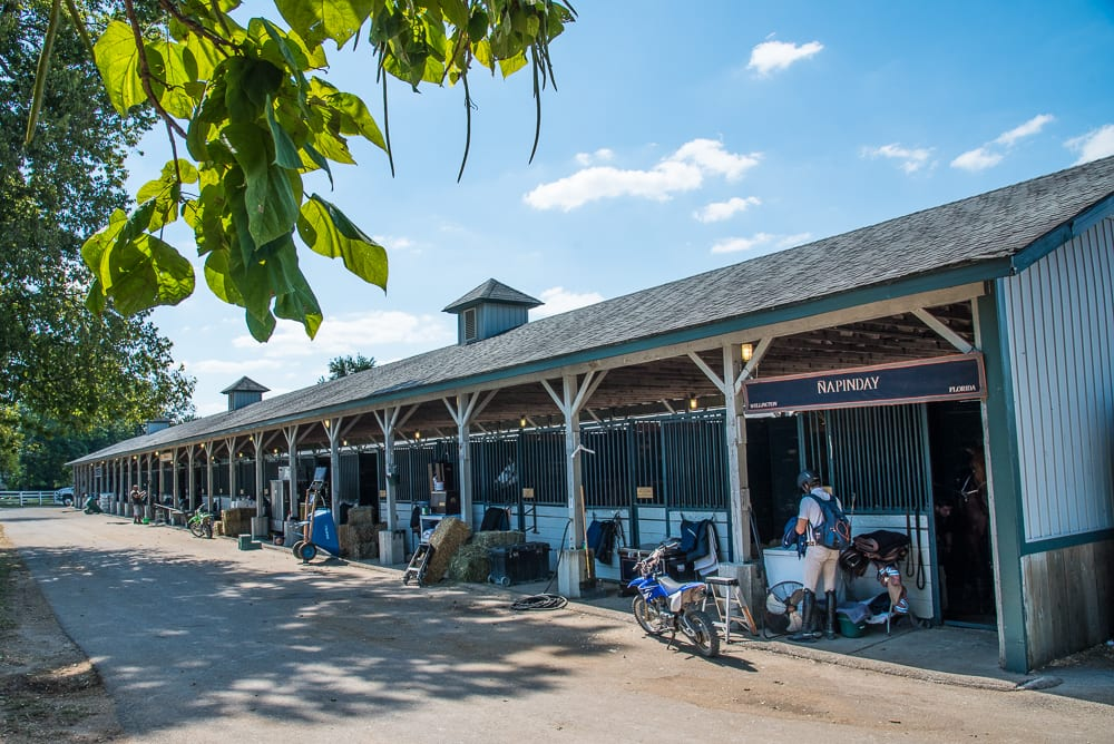 Updated Ky Horse Park Offers Assistance To Hurricane Irma