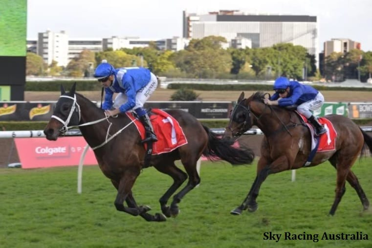 'Like Winning The Lottery': Team Winx Reflects On 'One Of The Best Horses That's Ever Lived'