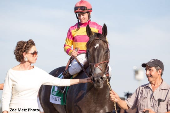 Avenge Returns To Form For Rodeo Drive Victory Earns