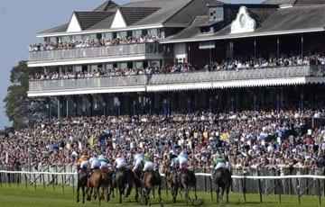 Top Races at Ayr | Ayr Racecourse |Ayr Race Track