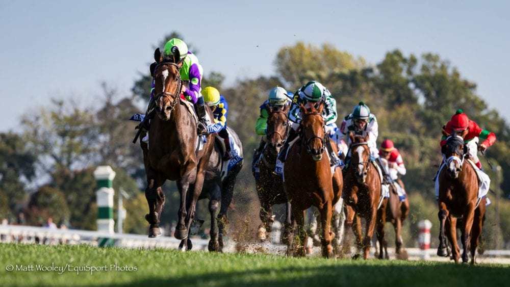 Rushing Fall Sweeps To Victory In G3 Jpmorgan Chase