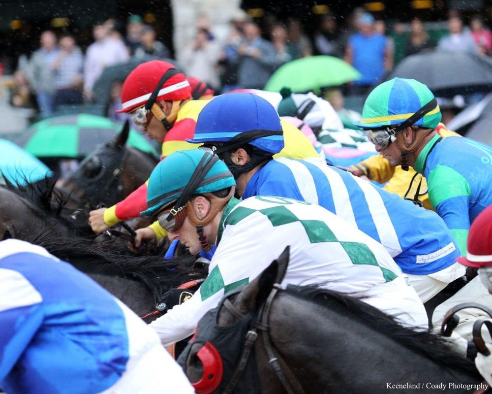 Shergar cup top jockey bettingadvice binary options price action indicator for forex