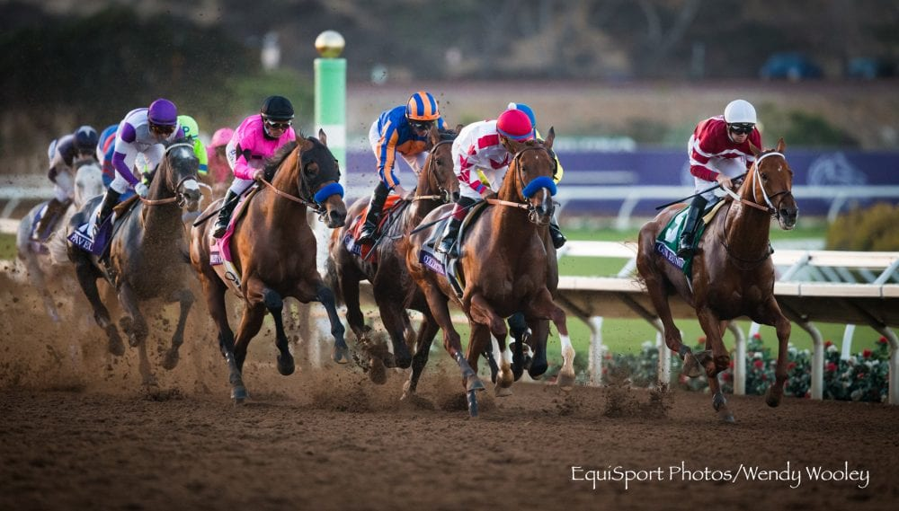 All 2017 Breeders Cup Horses Tested Clean By Maddy