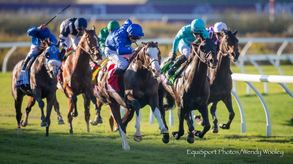 Medaglia D Oro S 2018 Fee Boosted To 250 000 After Pair