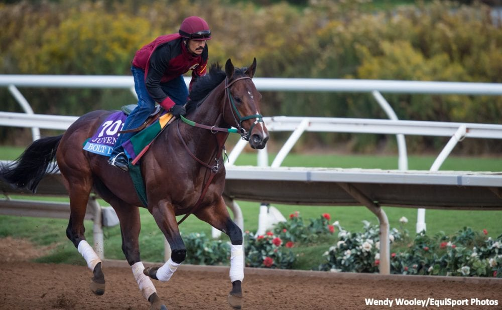 Top Rated Bolt D Oro Committed To San Felipe Santa Anita