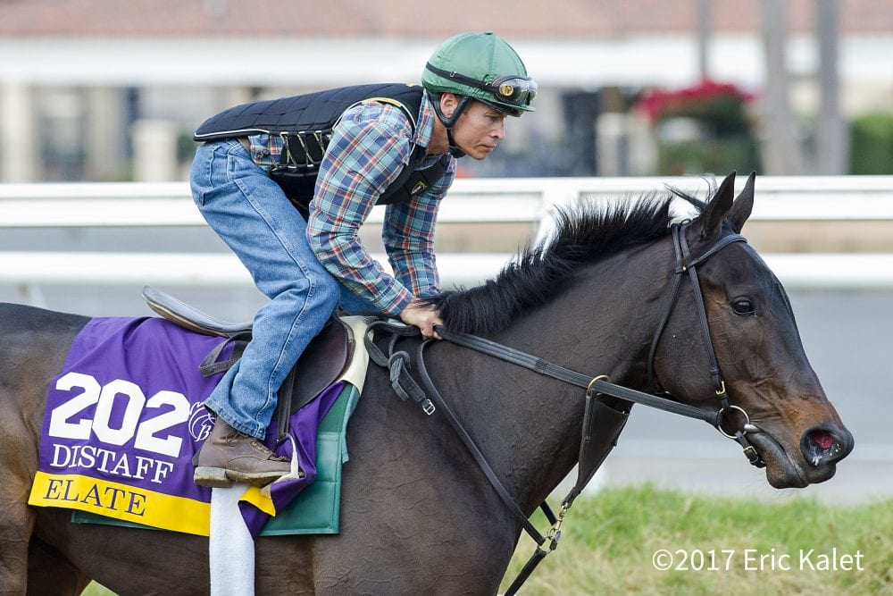 Bc Distaff Notes Easy Morning For Alabama Winner Elate