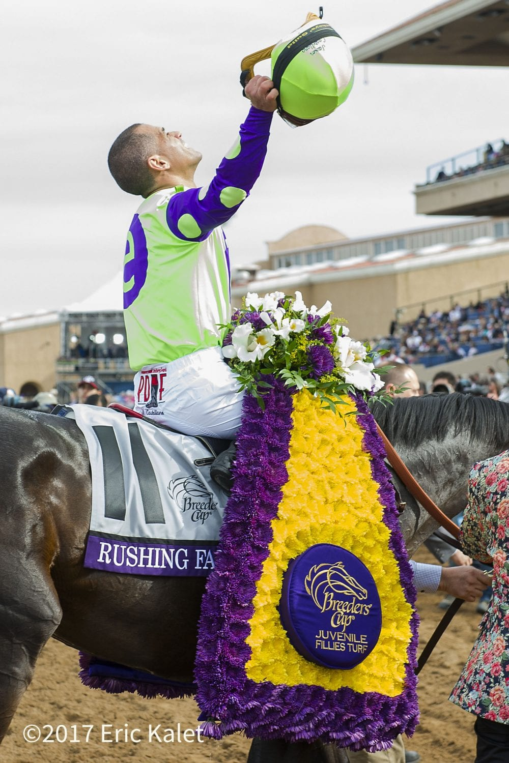 Breeders Cup Winner Rushing Fall Among 10 3 Year Old
