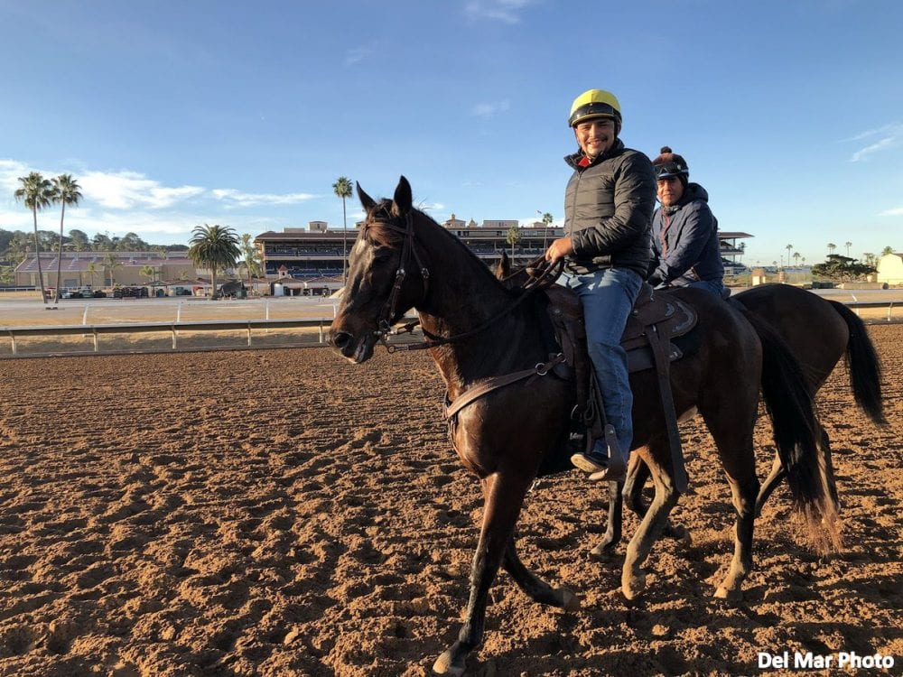 Del Mar: Post-Fire Situation Settles As Horses Return To Light Training