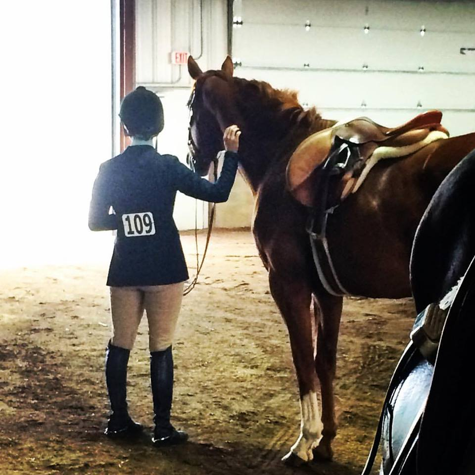 Touch Me, Please! Petting A Nervous Horse Does Not Reinforce