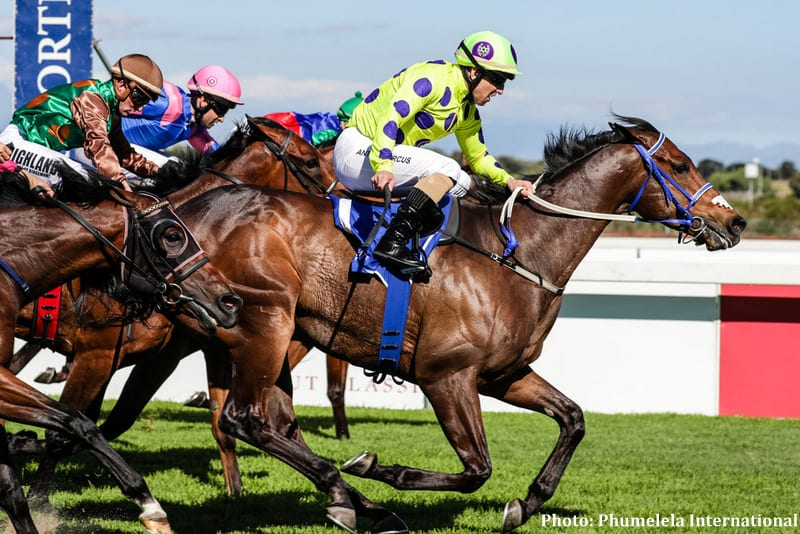 South Africa\'s Legal Eagle Seeks Historical Win Ahead Of Pegasus ...