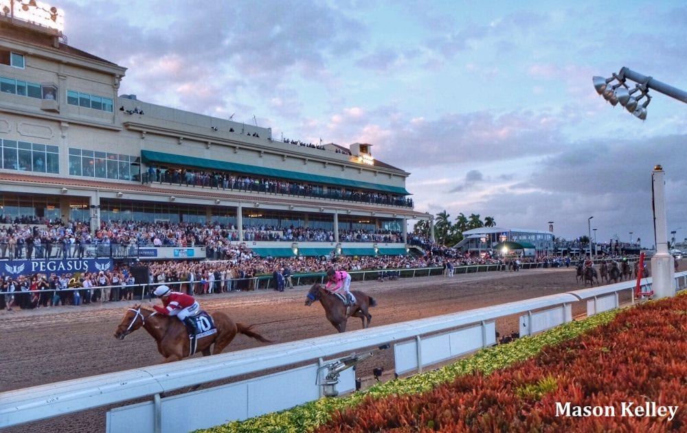 2019 Pegasus World Cup Tickets Go On Sale - Horse Racing News