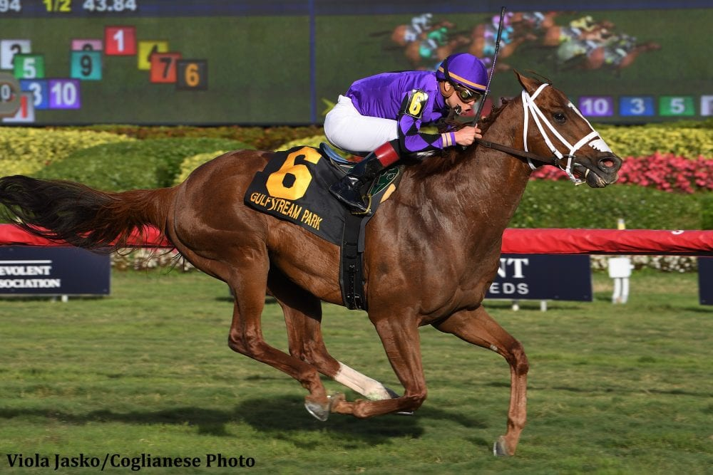 Breeders' Cup Countdown Presented By DRF Bets: Don't I Know You From