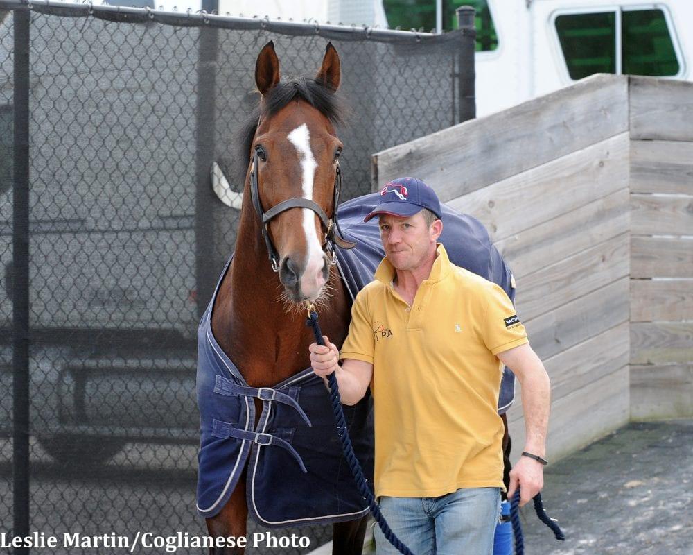 Gun Runner big favorite for $16 million Pegasus