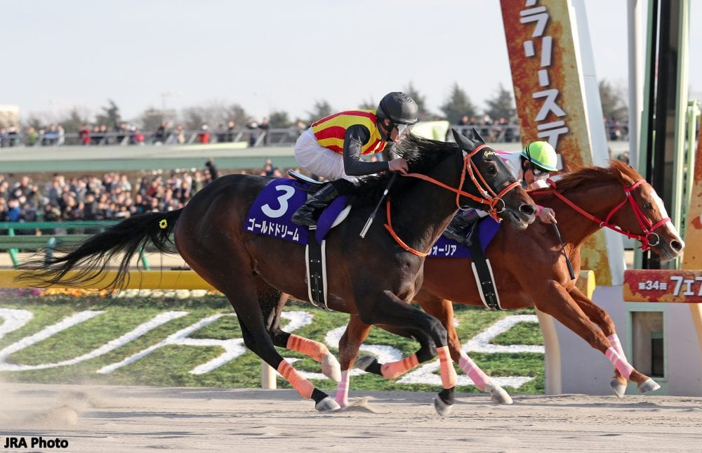 Defending Champ Gold Dream Takes On 15 Rivals In G1