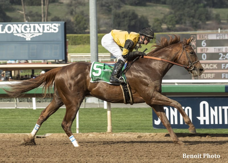 Kanthaka Steals San Vicente At Odds Of 11 1 Horse Racing