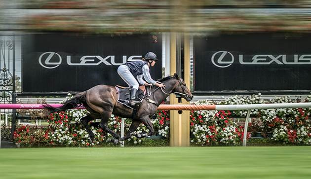 Lexus Named New Melbourne Cup Sponsor; Purse Increase ...