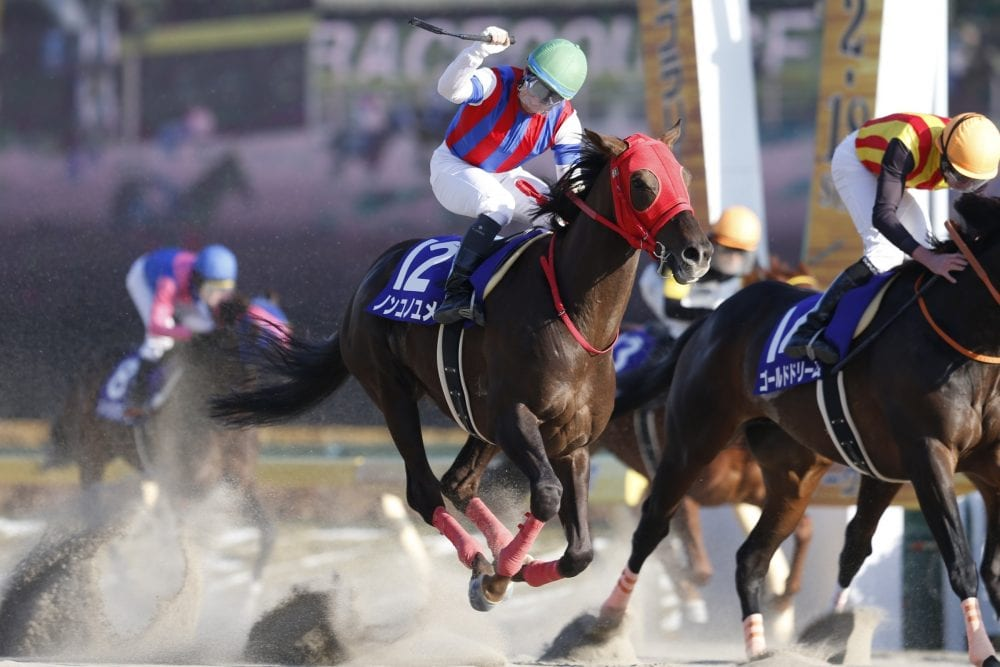 Nonkono Yume Becomes First Horse To Qualify For 2018