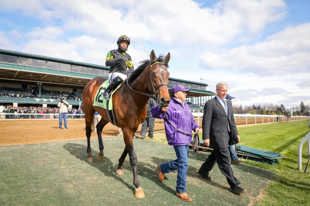 Bound For Nowhere Makes The Grade In Shakertown Horse