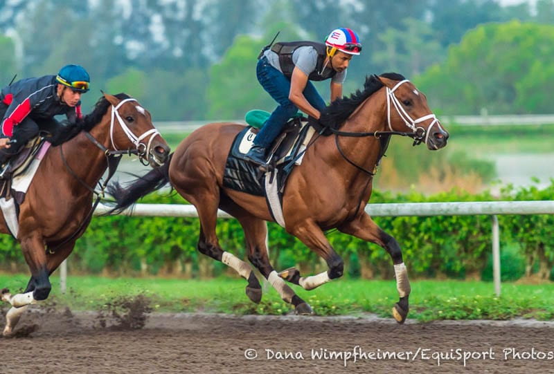 Derby Trio Leave Pletcher Smiling After Friday Breezes At
