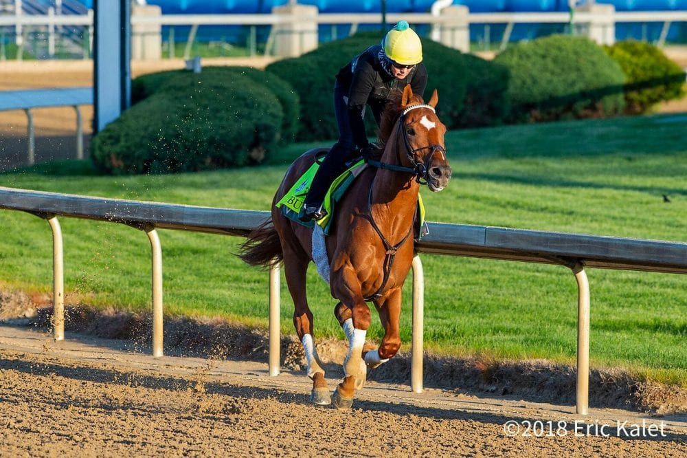 Equibase Analysis: Sorting Out The Derby Half Dozen - Horse