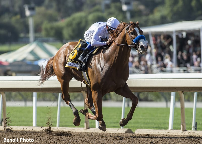 Justify Leaps To Top Of Kentucky Derby Media Poll Off