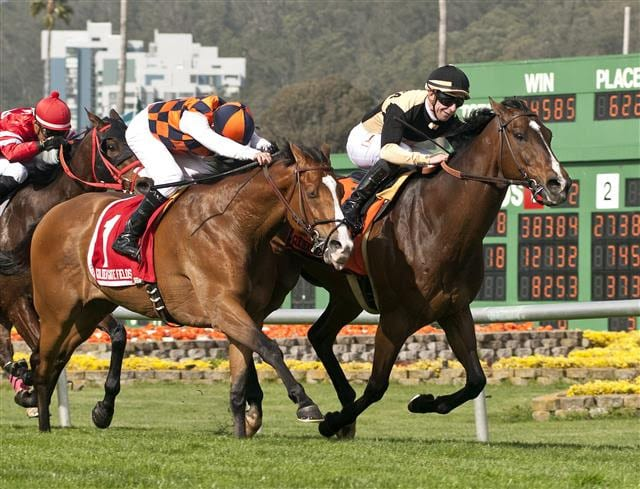 Flamboyant Is Racing S Newest Millionaire After San