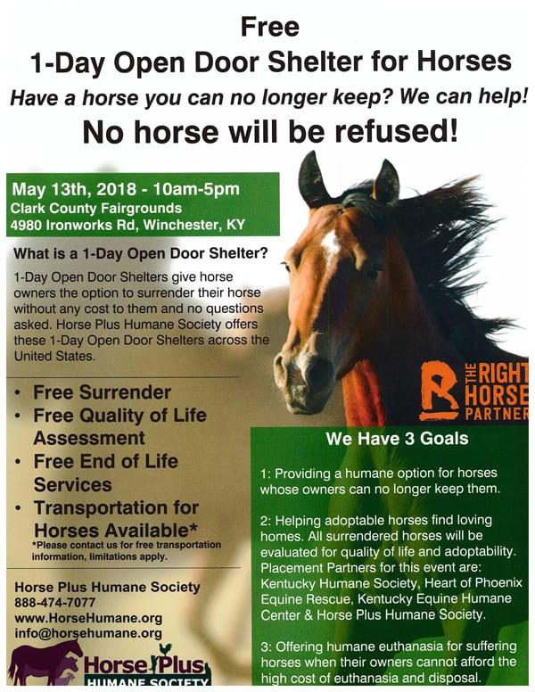 Open Door Shelter No Questions Asked Equine Surrender In Kentucky  sc 1 st  Paulick Report & Open Door Shelter: No Questions Asked Equine Surrender In Kentucky ...