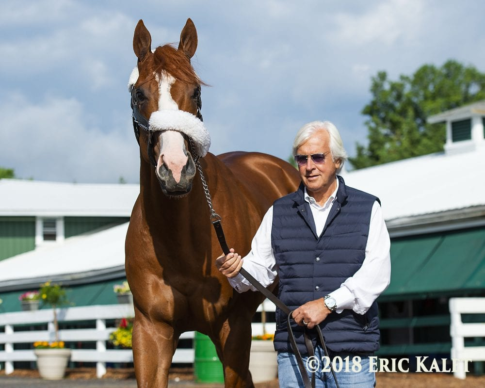 Justify To The Belmont: 'Something Can Go Wrong And He'd Still Win'