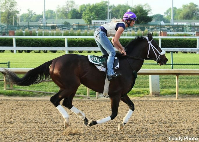Belmont Bravazo Full Of Himself Friday Works Planned
