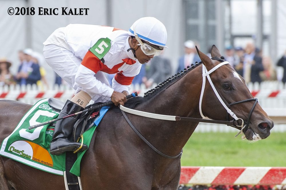 Mitole Never Threatened In Chick Lang Horse Racing News