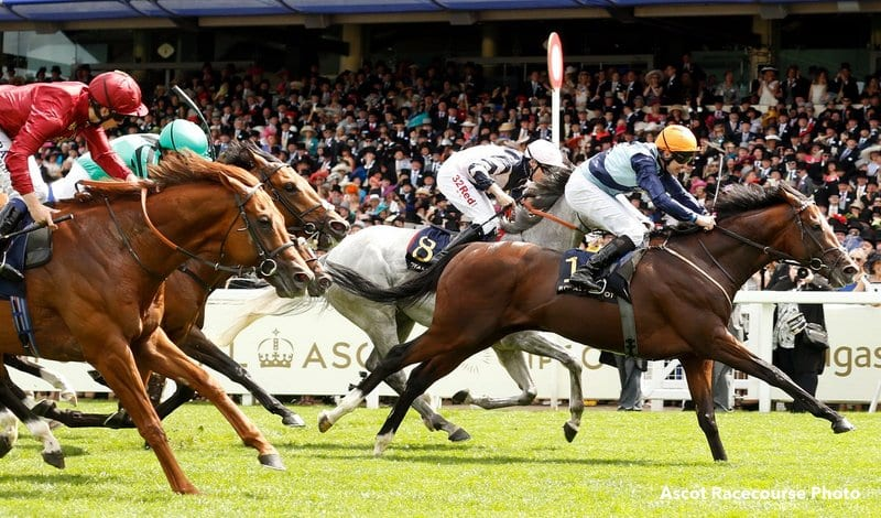 Accidental Agent royal ascot shocker 33 1 accidental agent tops queen anne, earns bc