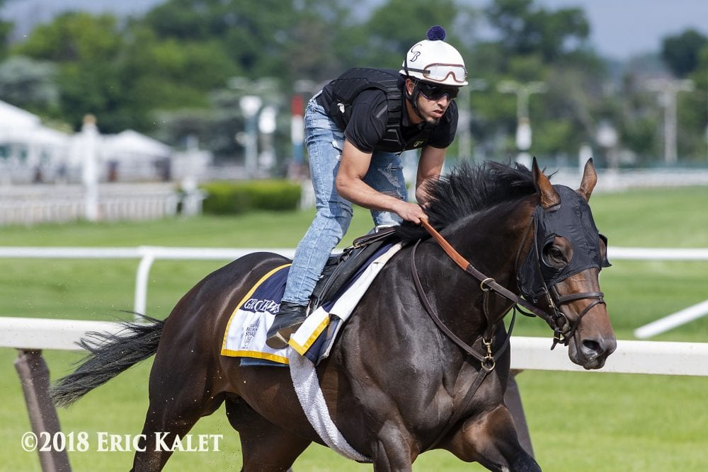 Brown Optimistic Gronkowski Can Make Travers Field After Saturday Work
