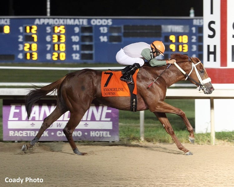 Evangeline Downs Entries & Results