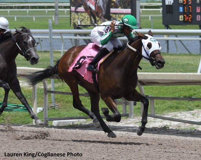 Nacho Mama Breaks Track Record In Debut At Gulfstream Park