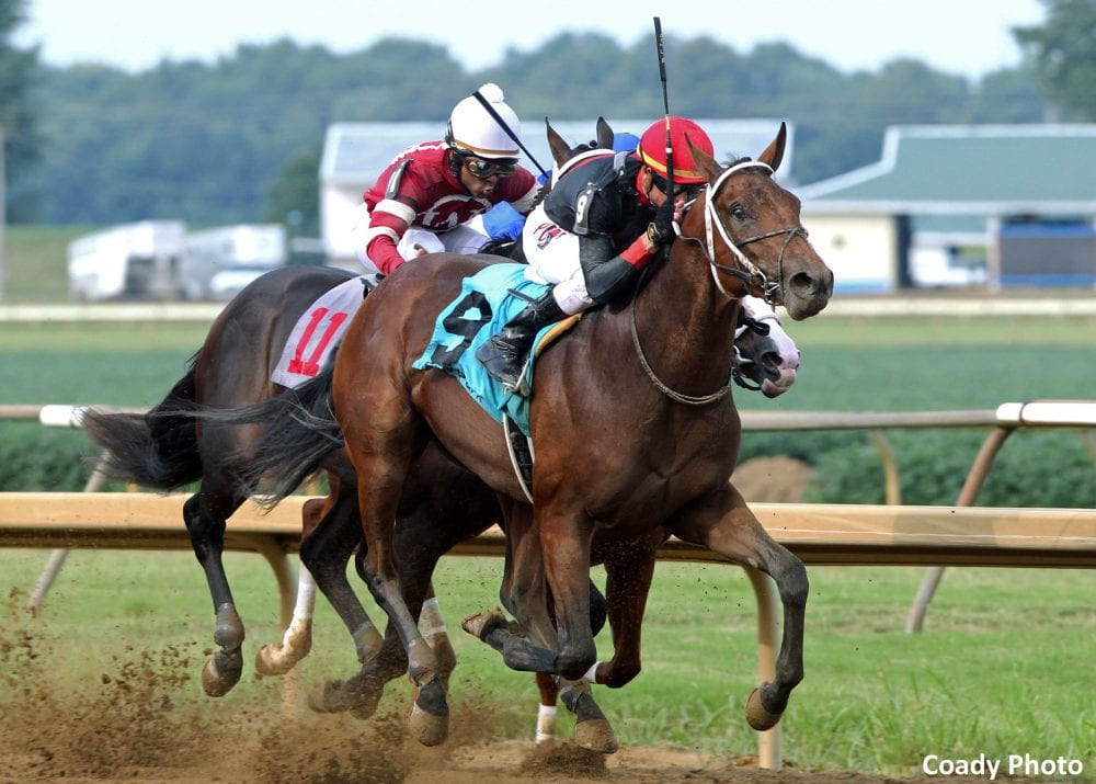 Lanerie Sweeps Ellis Park Juvenile Stakes With Tobacco