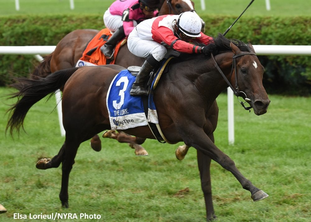 Inspector Lynley Gives Mcgaughey Emotional Win In Lure