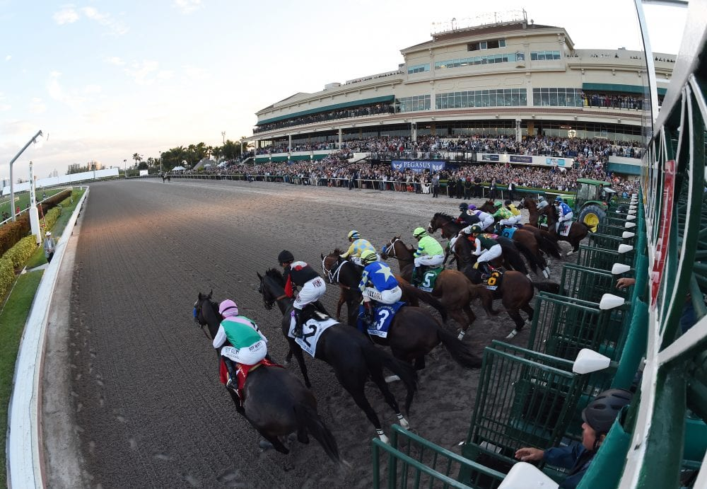 Gulfstream: $10 Million Pool Expected For Saturday's Mandatory