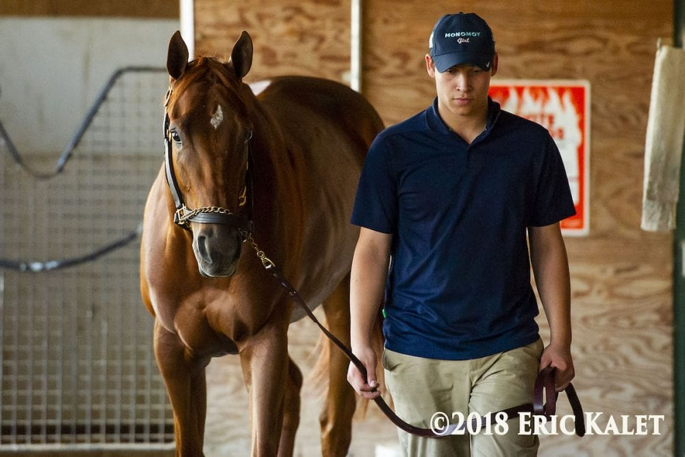 Cotillion, Pennsylvania Derby Join Kelso Handicap In NYRA's