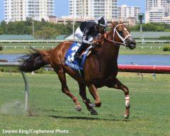 Irad Ortiz Jr Archives Horse Racing News Paulick Report
