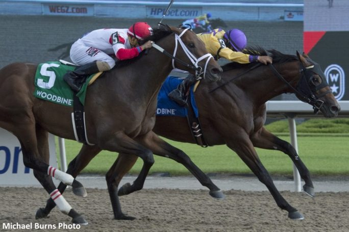 Wyatt S Town Records Back To Back Stakes Wins At Woodbine