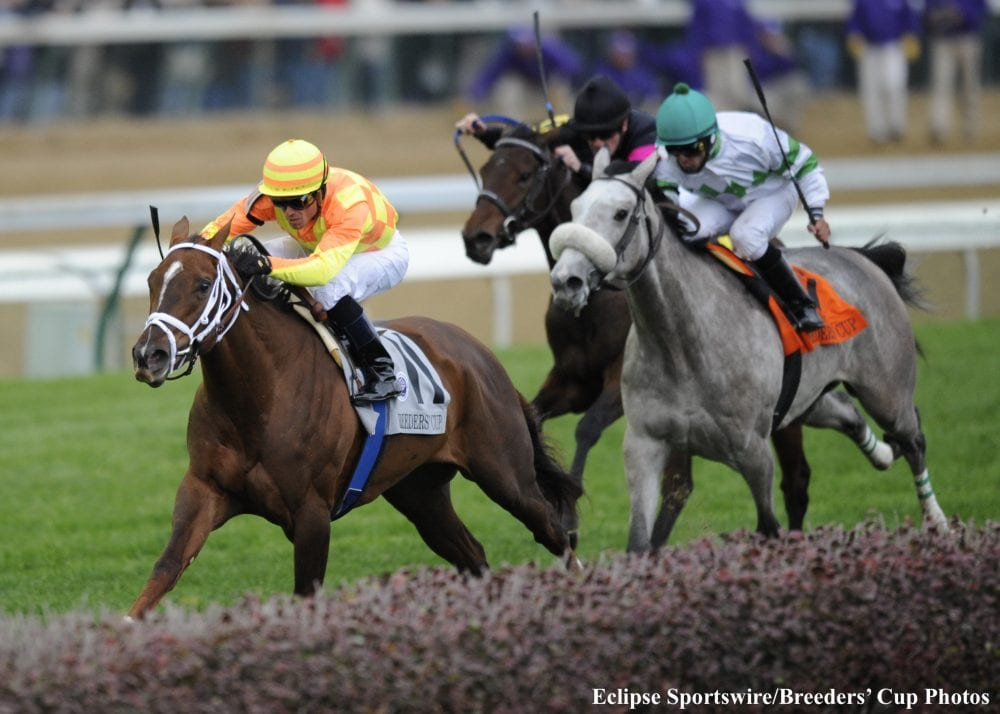 Best Of The Breeders Cup Presented By Brisnet Juvenile